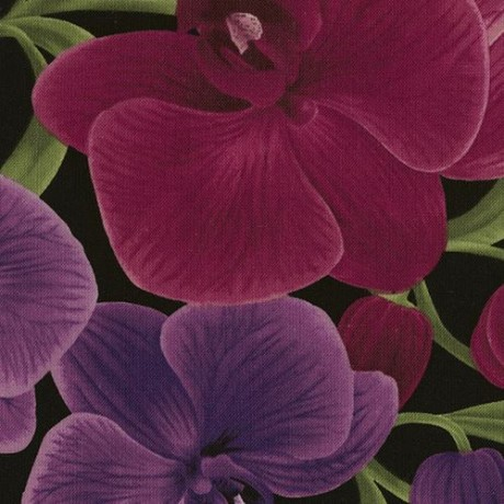 ff28f7c289a black fabric with big magenta purple orchid flower by Timeless Treasures